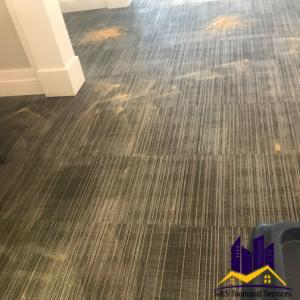 Dry Carpet Cleaning in Commercial Cleaning
