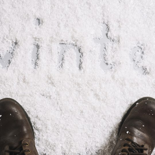 Benefits of Hiring Professional Cleaning Services this Winter